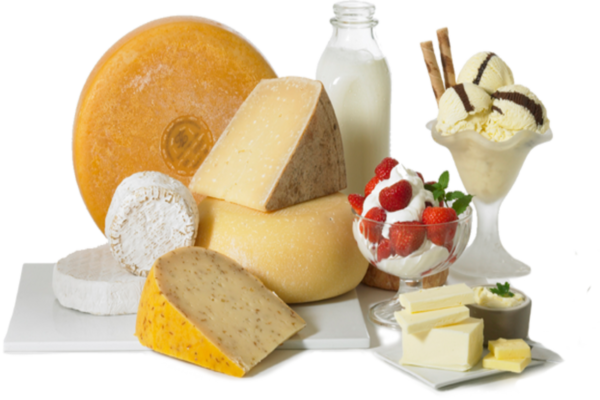 Dairy By Product Manufacturing