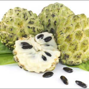 Custard Apple Processing